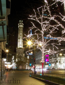Chicago's Water Tower